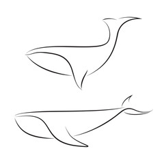 Black line whales on white background. Hand drawing vector graphic.