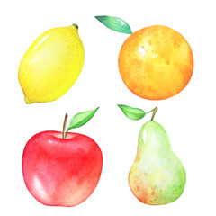 Colorful set of watercolor hand drawn juicy fruits isolated on white background