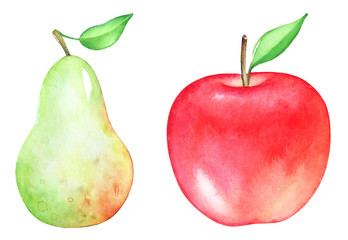 Set of hand drawn artistic watercolor fruits. Pear and apple isolated on white background.