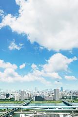 Wall Mural - 都市風景 東京