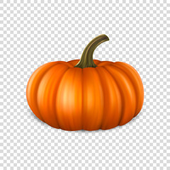 Realistic pumpkin closeup isolated on transparency grid background. Halloween Symbol. Design template, stock vector illustration, eps10