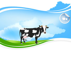 Cow dairy