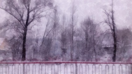 Winter landscape in gloomy day. birch branches  in the background of  snow