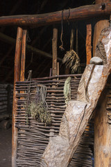 Log stair and dried plants