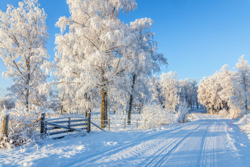 Dirt road in wintry idyllic landscape