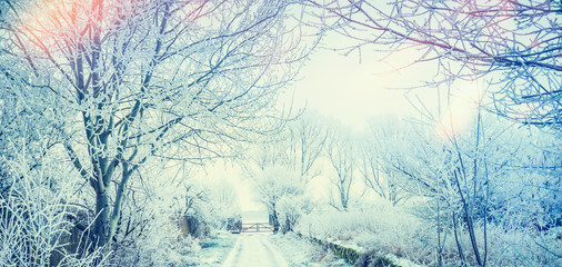 Beautiful winter country landscape with snow trees and road and gate