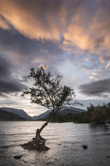 Beautiful landscape image of Llyn Padarn at sunrise in Autumn in Snowfonia National Park