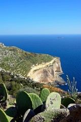 Elevated view of the Dingli cliffs and sea with prickly pears in the foreground, Dingli, Malta.