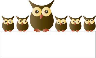 sweet owls sitting on a placard header or banner