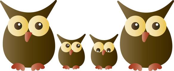 a sweet adorable owl family