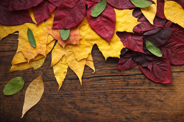 Autumn leaves are placed on a wood background with copy space.