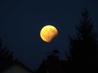 Der Mond. Vollmond und Mondfinsternis....