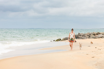 Dogs following tourists, Sri Lanka