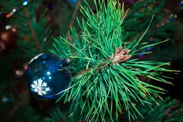 Новогодние игрушки на праздничной зеленой ели
