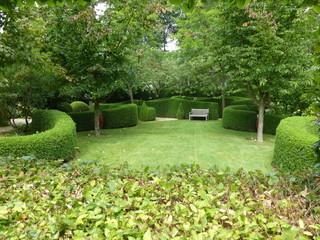 Giardino cittadino con arbusti tagliati a sfera con una panchina di legno in fondo