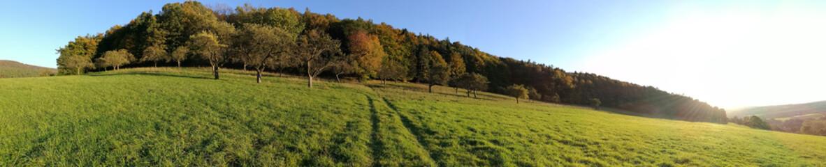 Panorama Herbstwald