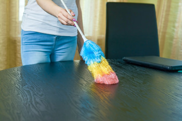 Female hand using dust brush. Young woman, dusting.