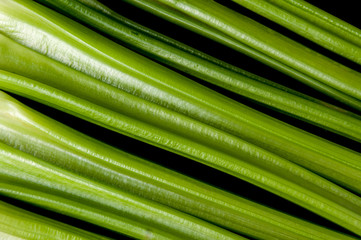 Background of green fresh petioled celery