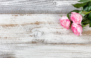 Mothers day gift of pink roses on rustic white wooden background