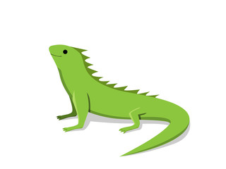 Friendly green iguana in flat style, vector