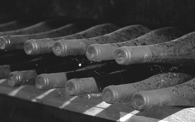 Vintage wine bottles in cellar, Hungary