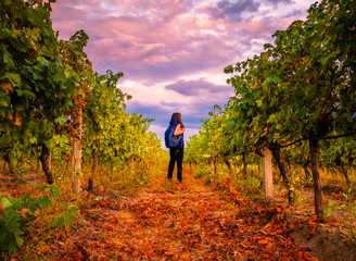Young girl with a backpack in Bulgarian vineyards on a Sunset ready to travel