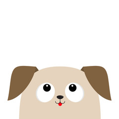 Dog puppy head looking up. Cute cartoon character. Pet baby collection. Mouth with tongue. Big eyes. Isolated. White background. Flat design.