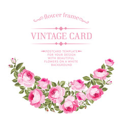 Luxurious vintage card of color rose. Vector illistration.