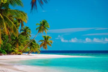 tropical sand beach