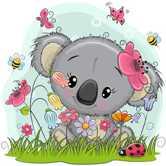 Cute Cartoon Koala on a meadow