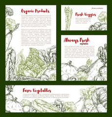 Vegetable banner with veggies, bean, mushroom
