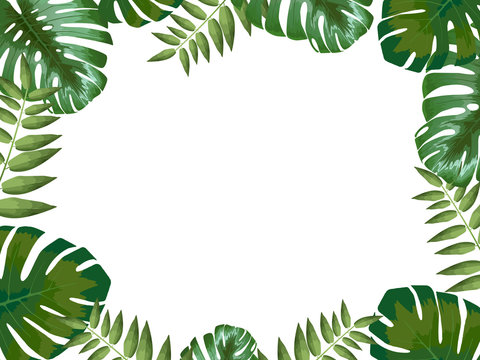 Tropical background with leaves with space for your design, monstera flower, vector illustration