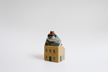 Tiny tree frog sitting  on miniature house with hat