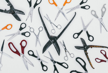 A collection of various different types of scissors