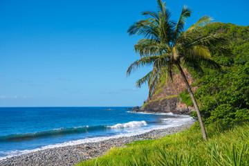 Wall Mural - Shore at south coast of Maui Hawaii