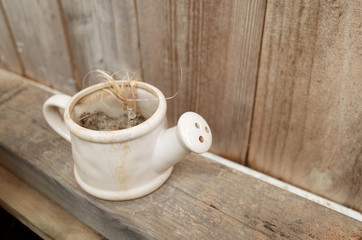 Close Up Dirty Watering Pot with Dried Plant on Wooden Shelf in Garden, Not take Care