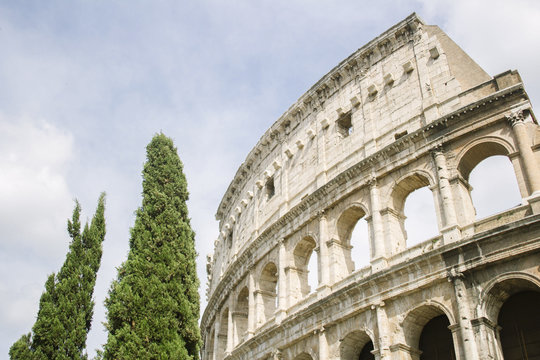 View of Colosseum with trees, Rome Italy