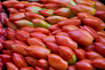 Tomatoes background, San Marzano tomato picture.