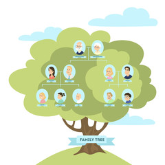 Family genealogic tree.