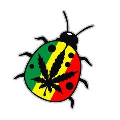 Rasta Beetle Reggae