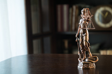 Themis figure in library