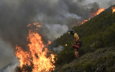 A firefighter builds a firewall in Tablado, near Muniellos park, Asturias