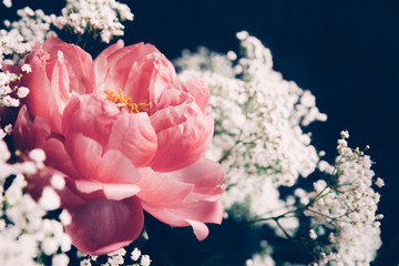 Coral peony and baby's-breath