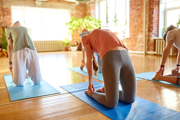 group of people doing camel pose at yoga studio