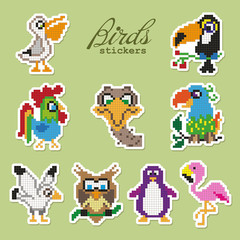 Colorful pixel patch badges with birds. Vector illustration