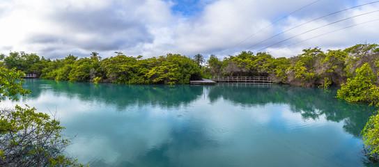 Galapagos Islands - August 24, 2017: Landscape of Lagoon of the Nymphs in Santa Cruz island, Galapagos Islands, Ecuador