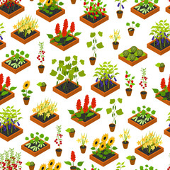 Plant Seedling Isometric View. Vector