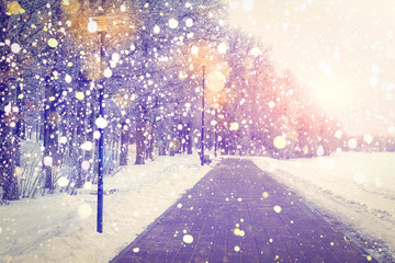 Christmas background. Snowfall in winter park on sunset. Color snowflakes shining on lanterns lights. Xmas theme.