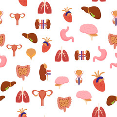 Cartoon Human Internal Organs Background Pattern on a Green Medicine Anatomy Flat Style Design for Web.