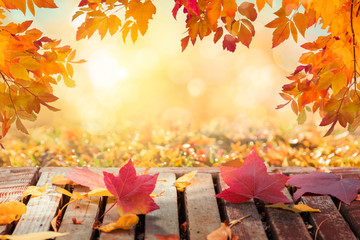 Colorful autumn leaves in sunny day background, wooden table, fallen leaves